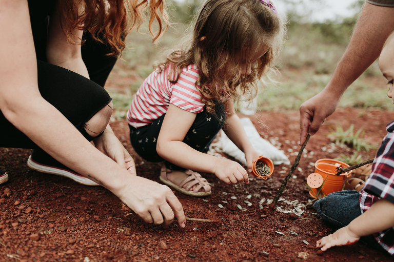 004-blog-plantando-girassois-frankbitencourt
